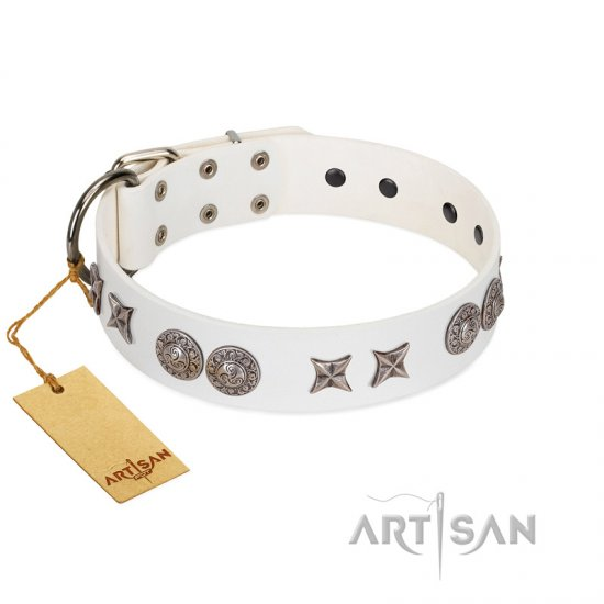 """Seventh Heavens"" FDT Artisan White Leather Cane Corso Collar with Chrome-plated Stars and Engraved Brooches"