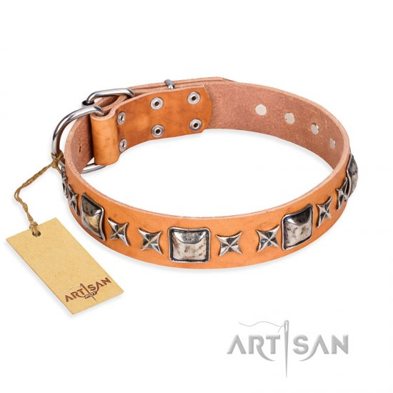 """Glamour Finery"" FDT Artisan Female Cane Corso collar of natural leather with stylish old-looking circles"