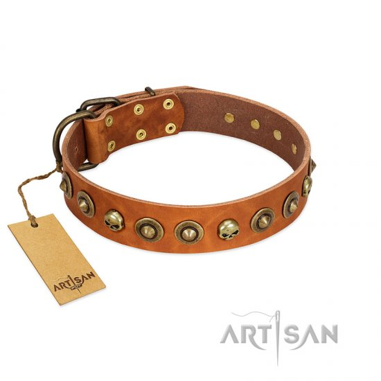 """Prez of the Pack"" FDT Artisan Tan Leather Cane Corso Collar with Skulls and Brooches"