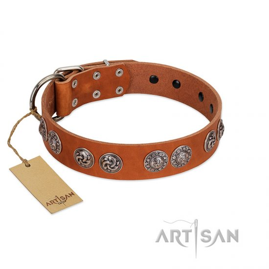 """Woofy Majesty"" FDT Artisan Tan Leather Cane Corso Collar with Round Silver-like Plates"