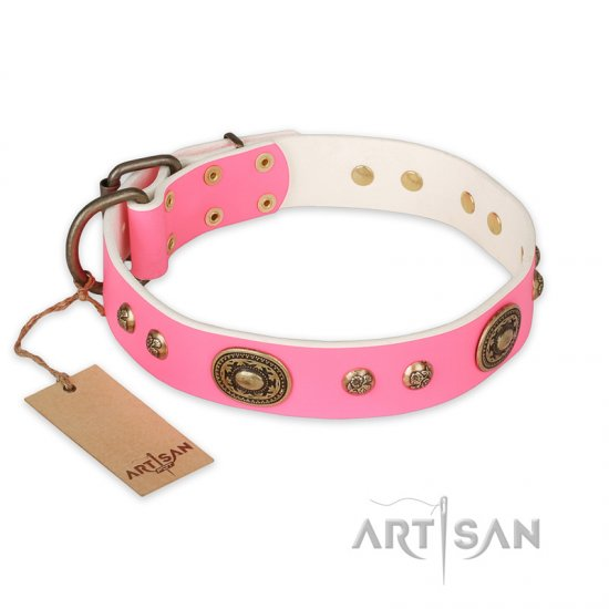 """Sensational Beauty"" FDT Artisan Pink Leather Cane Corso Collar with Old Bronze Look Plates and Studs"