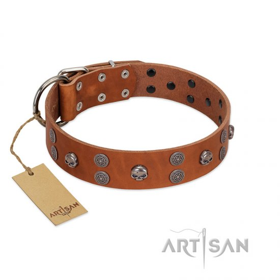 """Road Rider"" FDT Artisan Tan Leather Cane Corso Collar with Old Silver-like Skulls and Medallions"