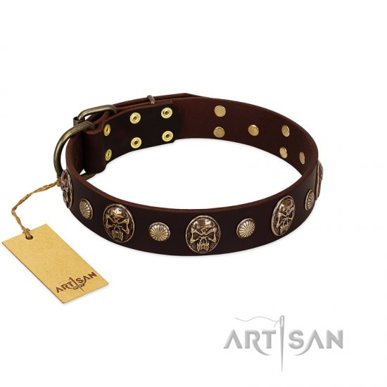 """Snazzy Paws"" FDT Artisan Brown Leather Cane Corso Collar Adorned with Conchos and Medallions"