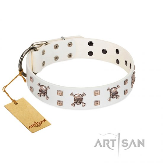 """Skull Island"" Premium Quality FDT Artisan White Designer Cane Corso Collar with Crossbones and Studs"