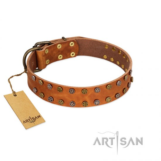 """Walk and Shine"" FDT Artisan Tan Leather Cane Corso Collar with Antiqued Studs"