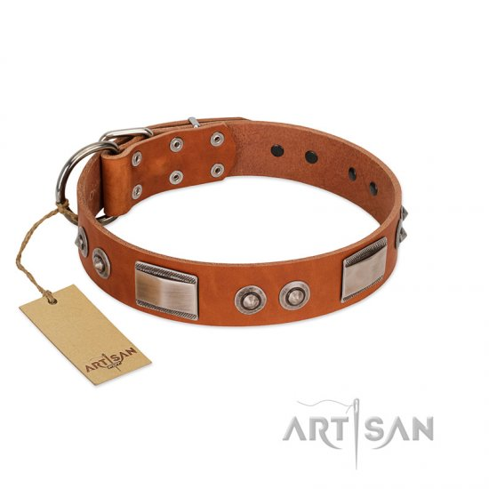 """Pawsy Glossy"" FDT Artisan Exclusive Tan Leather Cane Corso Collar 1 1/2 inch (40 mm) wide"