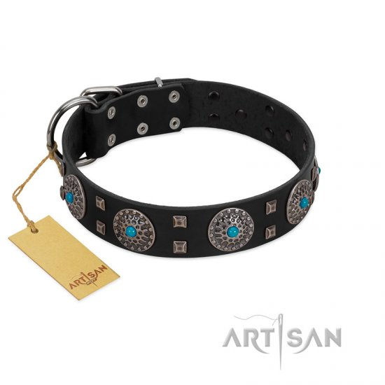 """Boundless Blue"" FDT Artisan Black Leather Cane Corso Collar with Chrome Plated Brooches and Square Studs"