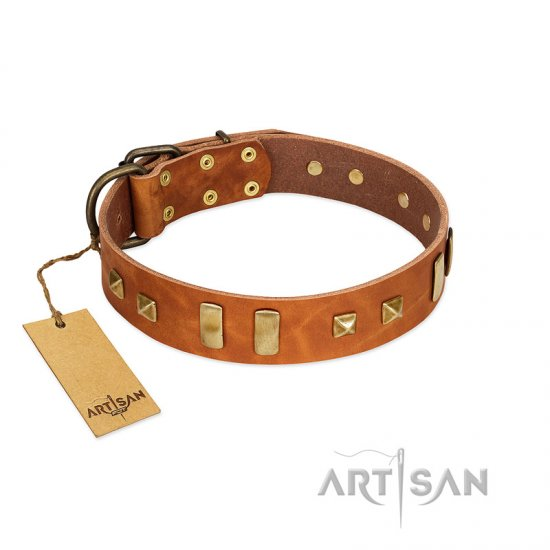 """Sand of Time"" FDT Artisan Tan Leather Cane Corso Collar with Old Bronze-like Studs and Plates"