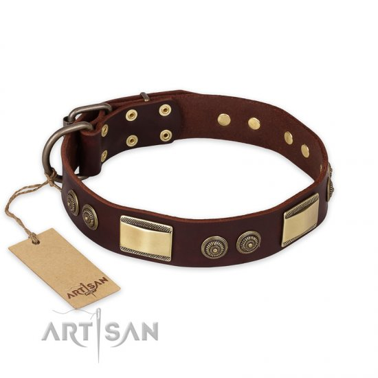 """Golden Stones"" FDT Artisan Brown Leather Cane Corso Collar with Old Bronze Look Plates and Circles"