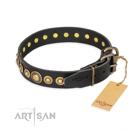 """Gold Mine"" FDT Artisan Black Leather Cane Corso Collar with Amazing Bronze-Plated Round Studs"