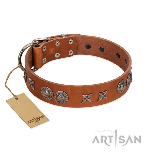 """Splendid Armor"" Premium Quality FDT Artisan Tan Designer Cane Corso Collar with Shields and Stars"