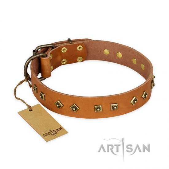 """Autumn Story"" FDT Artisan Leather Cane Corso Collar with Old Bronze Look Studs"