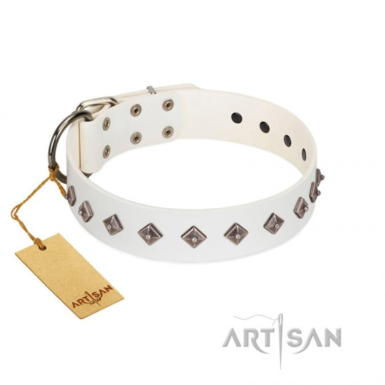 """Snowy Day"" Stylish FDT Artisan White Leather Cane Corso Collar with Small Dotted Pyramids"