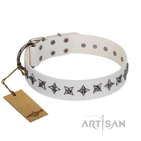 """Midnight Stars"" FDT Artisan Fashionable Leather Cane Corso Collar with Old Silver-like Plated Decorations"