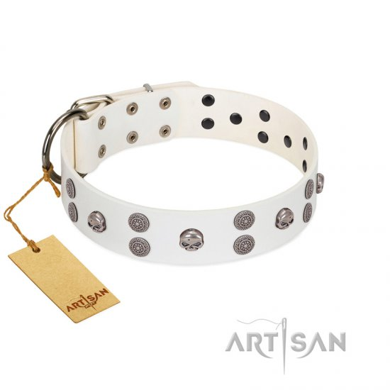 """Edgy Look"" FDT Artisan White Leather Cane Corso Collar with Silver-like Skulls"