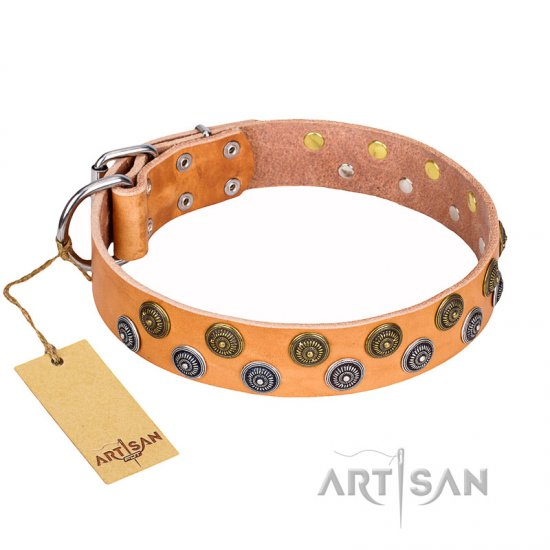 """Precious Sparkle"" FDT Artisan Tan Leather Cane Corso Collar - 1 1/2 inch (40 mm) wide"