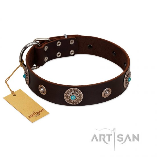 """Magic Stones"" FDT Artisan Brown Leather Cane Corso Collar with Chrome Plated Brooches and Studs"