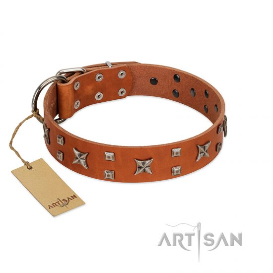 """Faraway Galaxy"" FDT Artisan Tan Leather Cane Corso Collar Adorned with Stars and Squares"