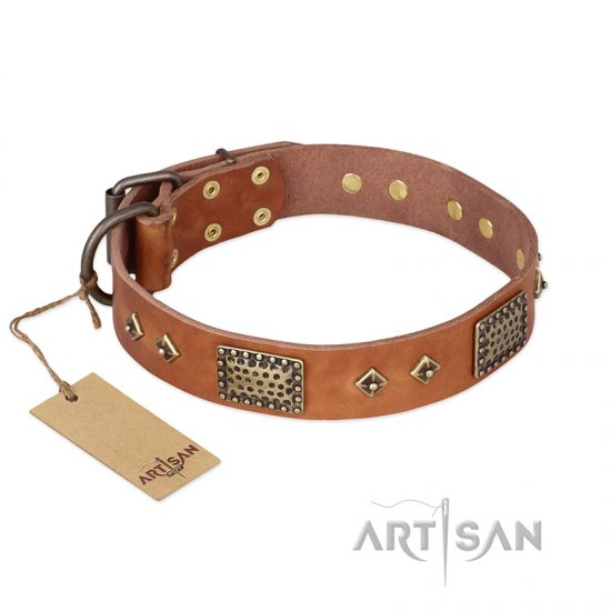 """Catchy Look"" FDT Artisan Decorated Tan Leather Cane Corso Collar"