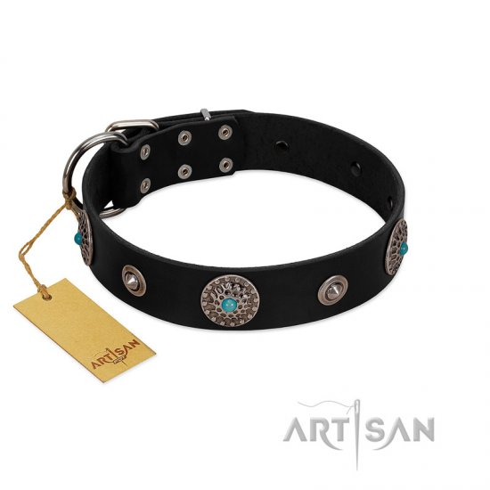 """Blue Gems"" FDT Artisan Black Leather Cane Corso Collar with Chrome Plated Studs and Conchos"