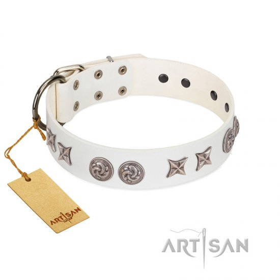 """Galaxy Hunter"" FDT Artisan White Leather Cane Corso Collar with Engraved Brooches and Stars"