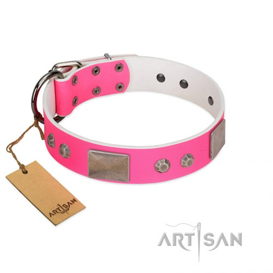 """Pink Blush"" Premium Quality FDT Artisan Pink Designer Cane Corso Collar with Plates and Studs"