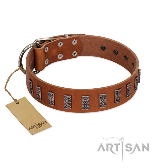 """Silver Century"" Fashionable FDT Artisan Tan Leather Cane Corso Collar with Silver-Like Plates"