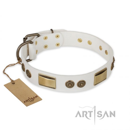 """Golden Avalanche"" FDT Artisan White Leather Cane Corso Collar with Old Bronze Look Plates and Circles"