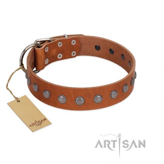 """Little Floret"" Fashionable FDT Artisan Tan Leather Cane Corso Collar with Silver-Like Adornments"