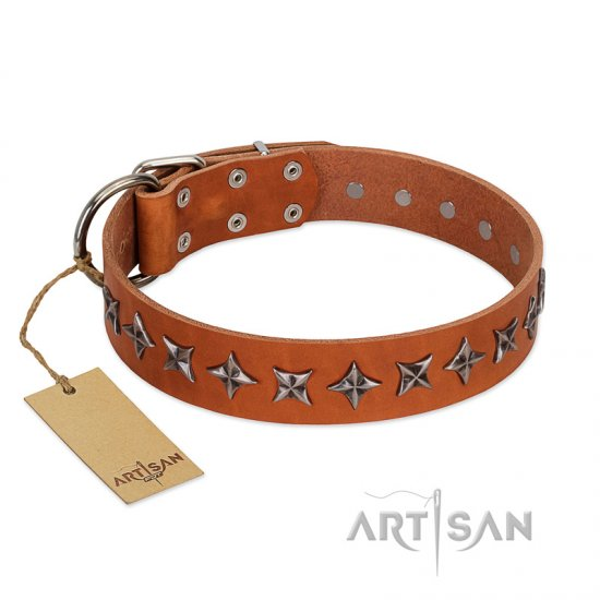 """Star Trek"" FDT Artisan Tan Leather Cane Corso Collar Decorated with Stars"