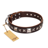 'Perfect Impression' FDT Artisan Cane Corso Brown Leather Dog Collar with Silvery Square Studs - 1 1/2 inch (40 mm) Wide
