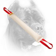 Large Fire Hose Cane Corso Bite Tug with Two Handles