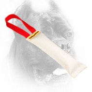 Small Fire Hose Cane Corso Bite Tug for Puppy Training