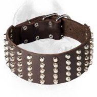 3 Inch Wide Studded Leather Cane Corso Collar