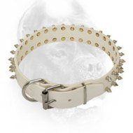 White Leather Cane Corso Collar with 2 Rows of Spikes