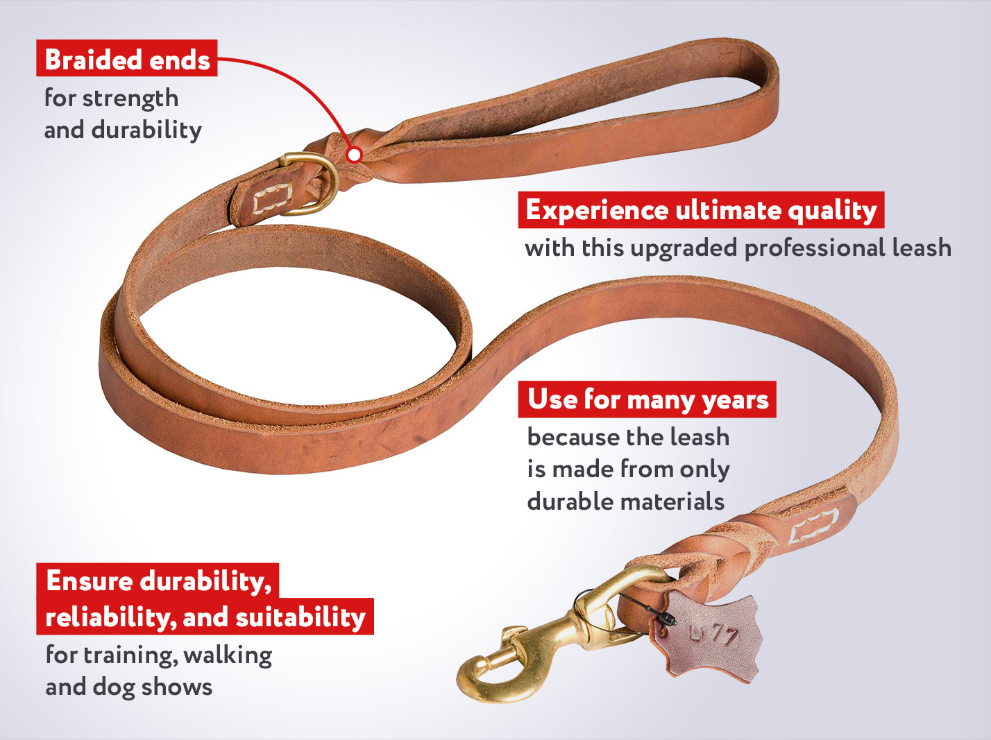 Pro Upgraded Design Leather Cane Corso Leash