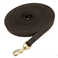 Strong Leather Cane Corso Leash Meant for Tracking