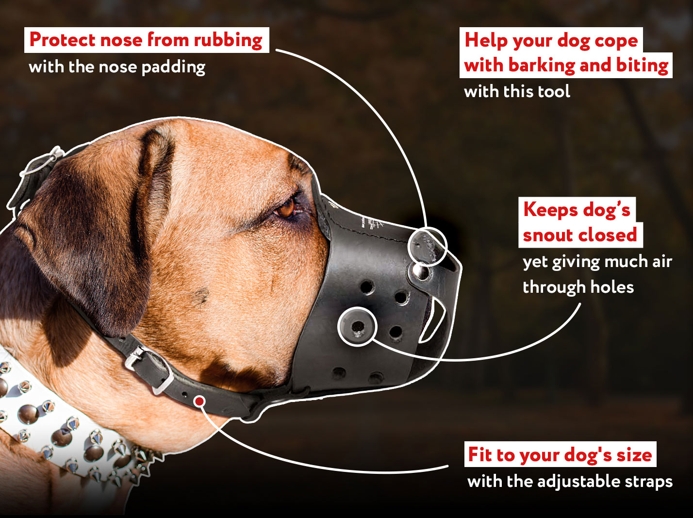 Universal in Use Safe Leather Cane Corso Muzzle