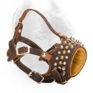 Royal Spiked and Studded Leather Cane Corso Muzzle for Walking