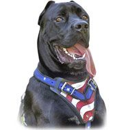 American Flag Painted Leather Dog Harness-Protection Cane Corso Designer Harness