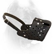 Police Leather Cane Corso Muzzle with One Strap