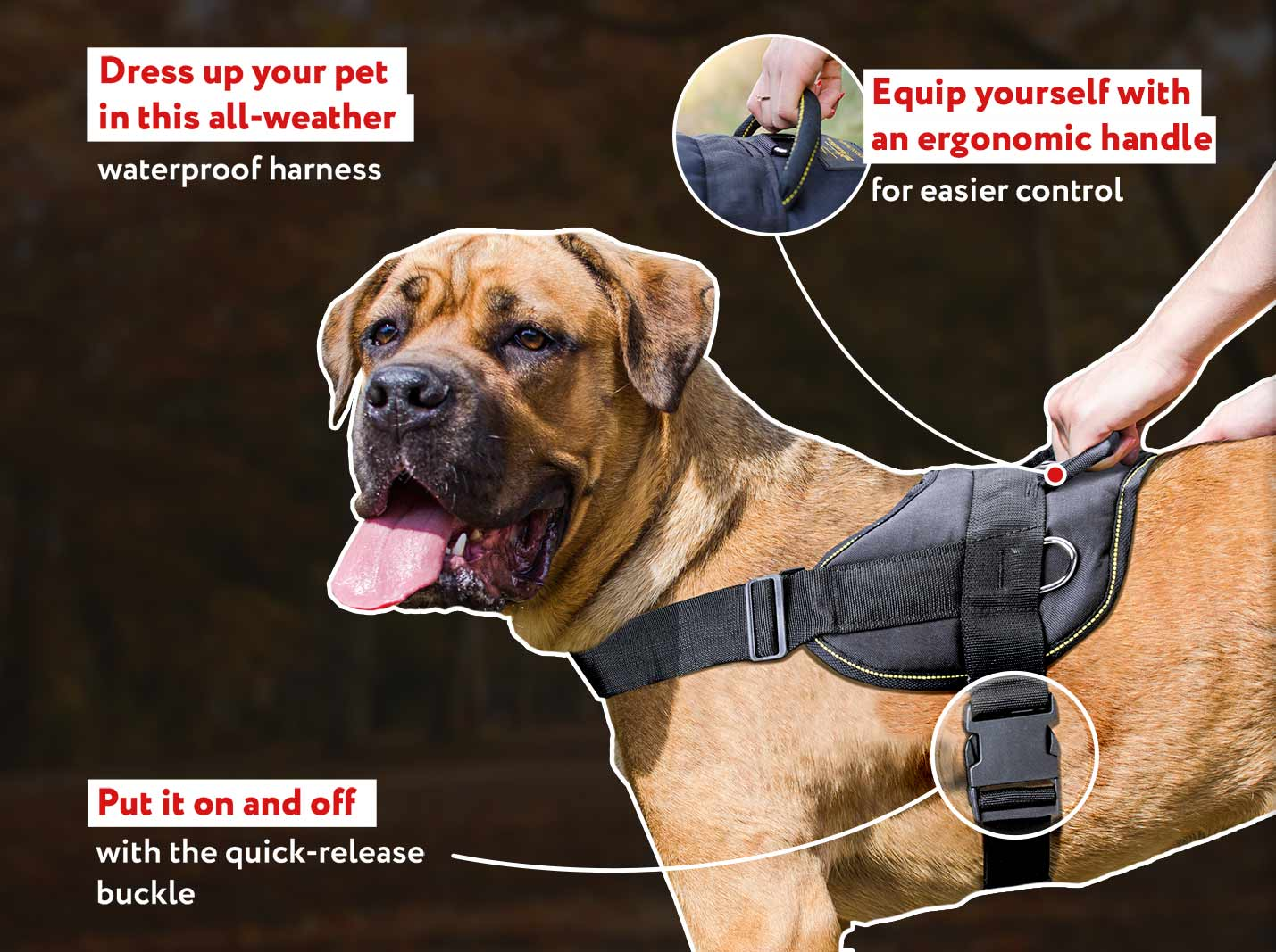 Nylon multi-purpose dog harness for tracking-pulling-Cane Corso