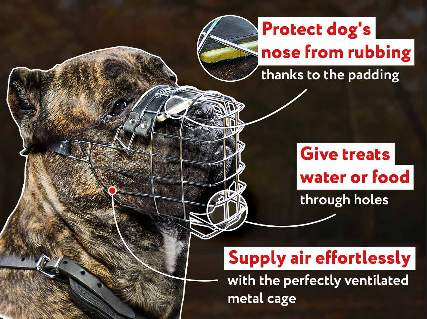 'The Silencer' Easy to Use Wire Basket Cane Corso Muzzle With One Strap