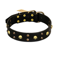 FDT Artisan 'Heavy Metal' Leather Cane Corso Collar with Skulls and Studs 1 1/2 inch (40 mm)