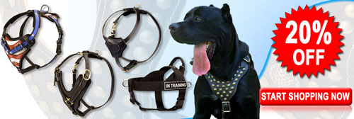 Superior Mastiff Harnesses