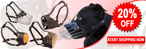 Get Today High Quality Exclusive Cane Corso Muzzles