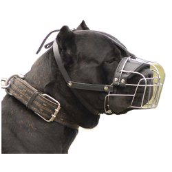 best basket muzzle