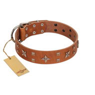 """Dreamy Gleam"" FDT Artisan Tan Leather Cane Corso Collar Adorned with Stars and Squares"
