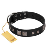 """Foregone Riches"" FDT Artisan Black Leather Cane Corso Collar with Old Silver-like Square Studs and Pyramids"