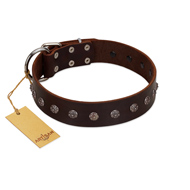 """Graceful Classic"" Mod FDT Artisan Brown Leather Cane Corso Collar"